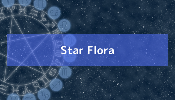 Star Floraの画像